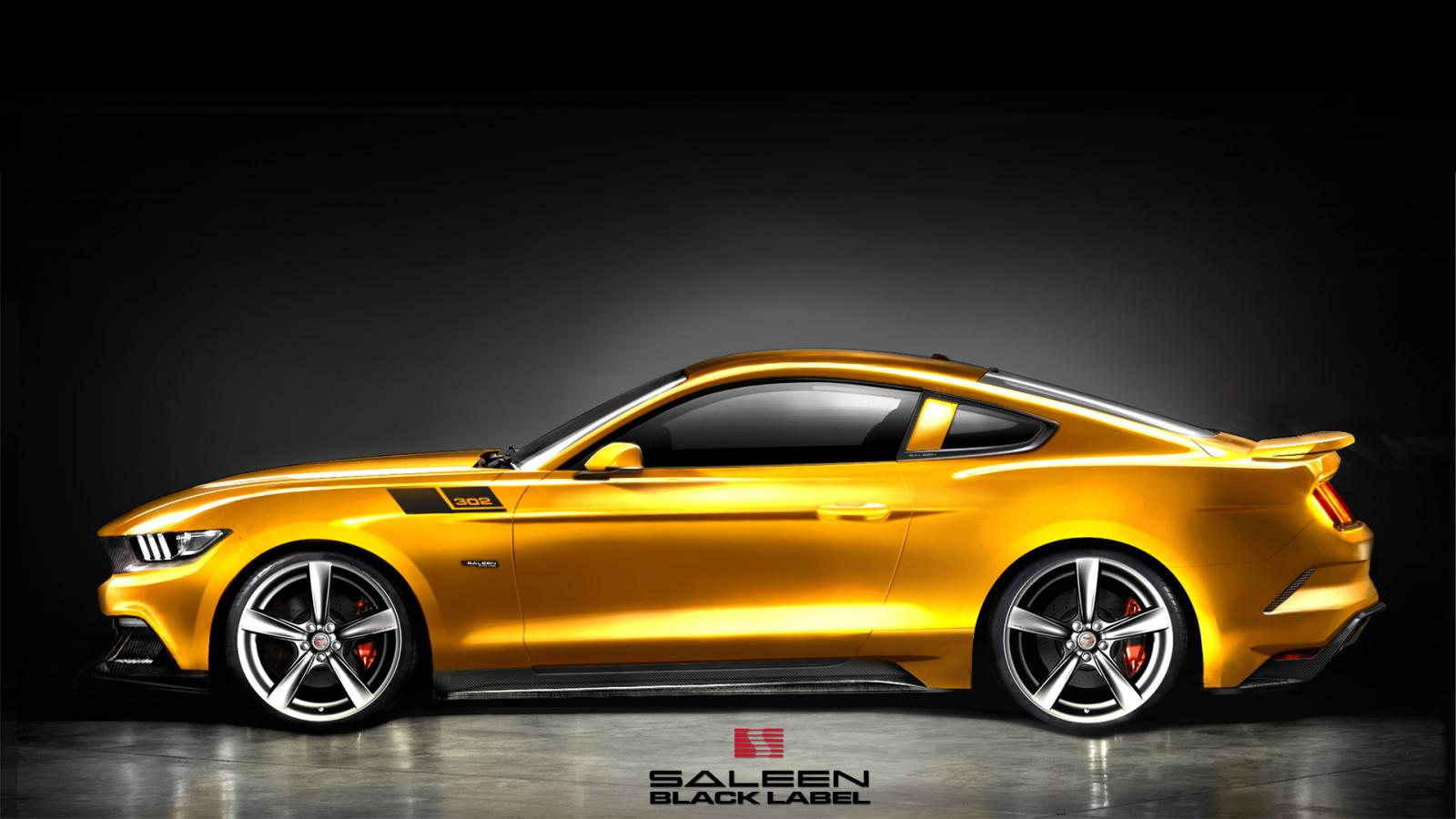 2015 saleen s302 mustang 100482436. Black Bedroom Furniture Sets. Home Design Ideas