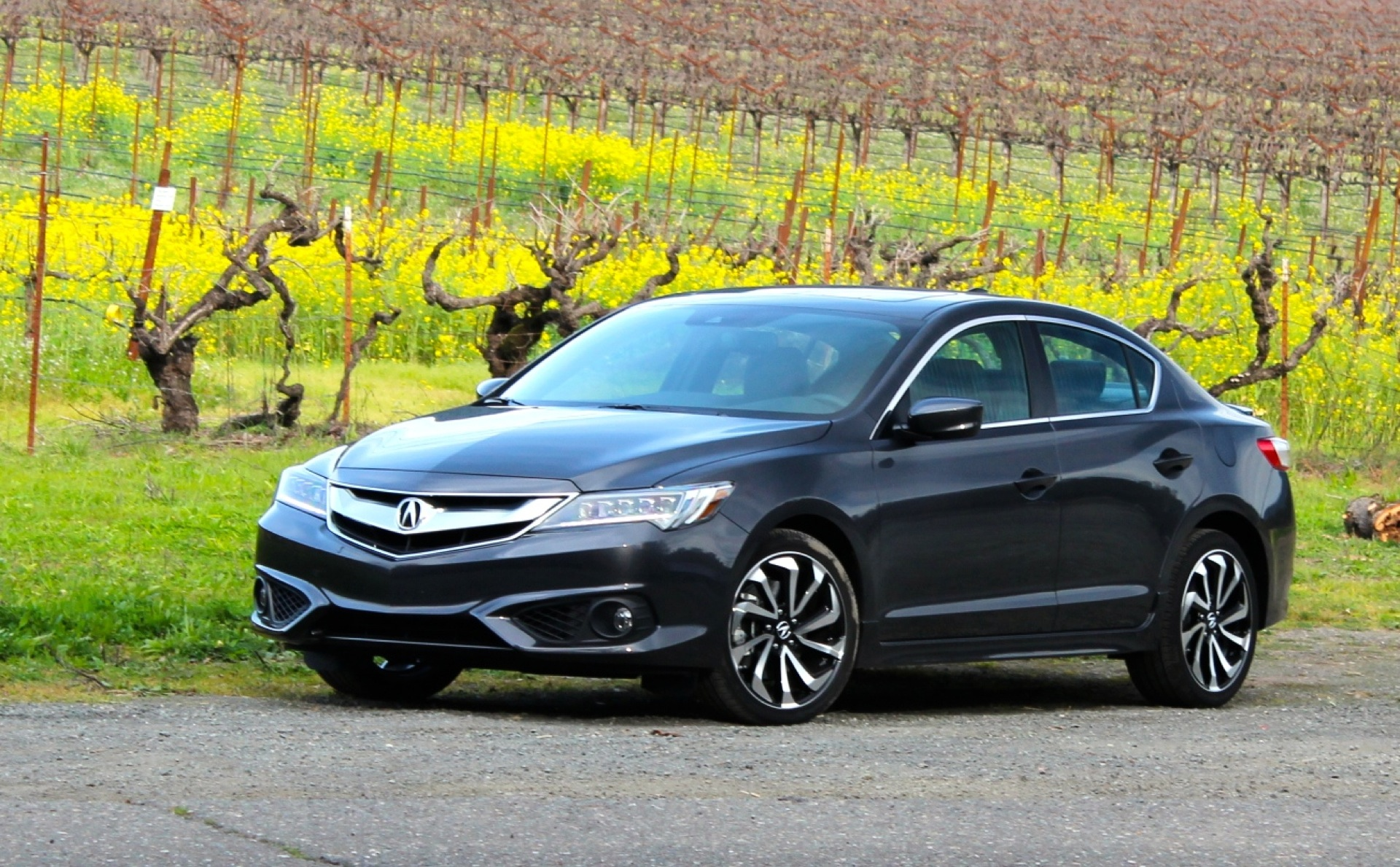 2016 acura ilx first drive. Black Bedroom Furniture Sets. Home Design Ideas