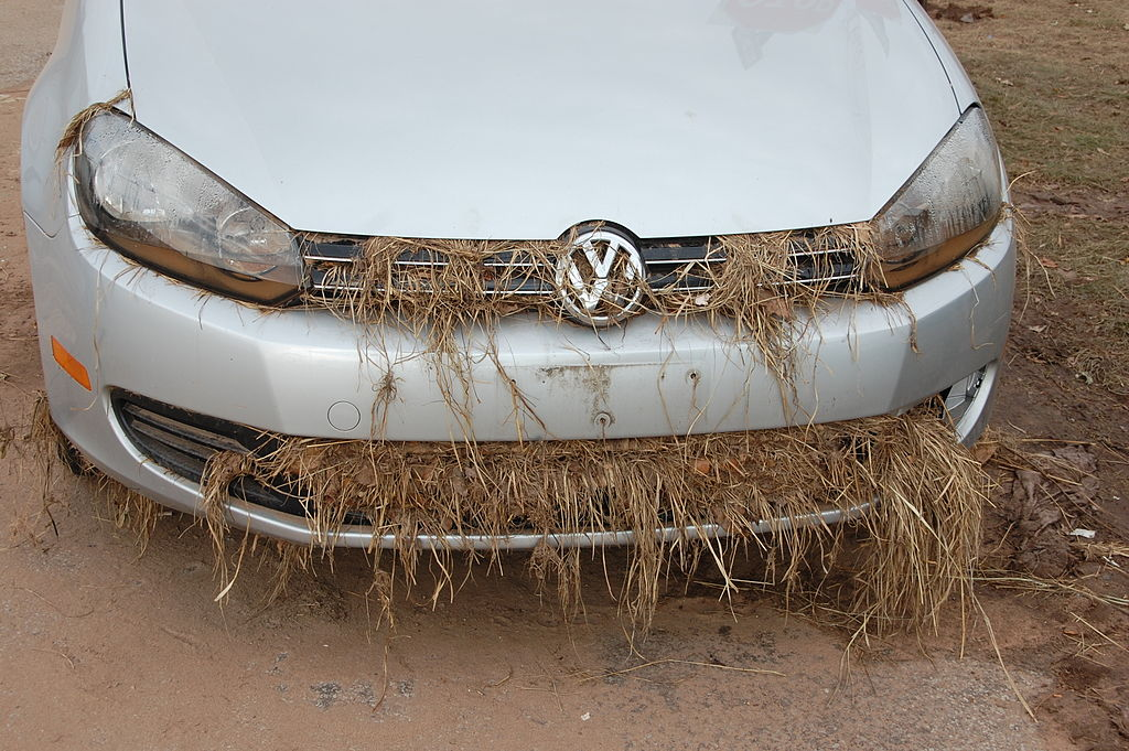 Rental Cars In Short Supply For Thanksgiving Thanks To Sandy