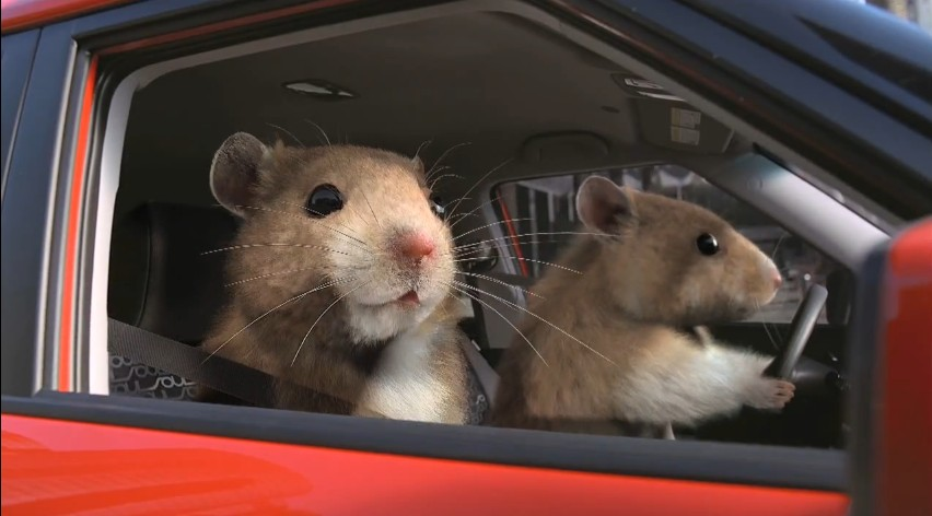 2011 New York Auto Show Kia Hamsters Take Top Honors From