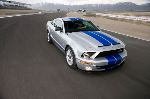 2008 Ford Mustang Shelby GT500KR #9130665