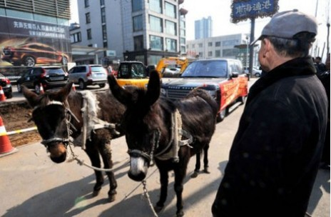 Donkeys tow broken-down Range Rover back to dealership in China. Image via The Tycho.