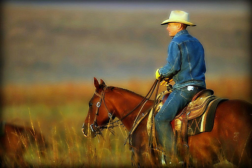 rodeo buddhist single women Our worldwide array of women's retreats feature yoga, women's wisdom, meditation, weight loss and cleansing, fasting, healing, silence, creative, raw food, self.