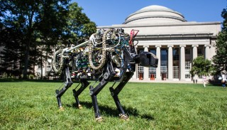 Hardly A Vehicle, MIT's Electric Cheetah Is Still Impressive